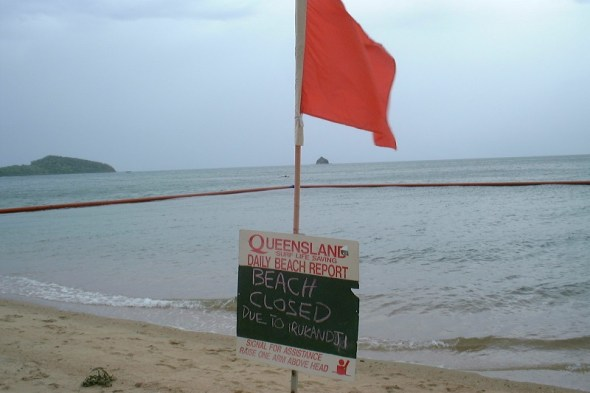 Beach closure due to Irukandji.