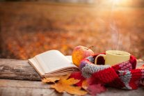 Image result for cozy autumn book