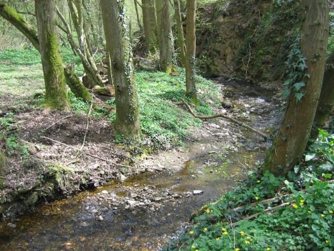 Et au milieu coule une rivière...