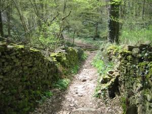Le chemin de la Rivière