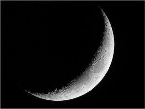 croissant-lune