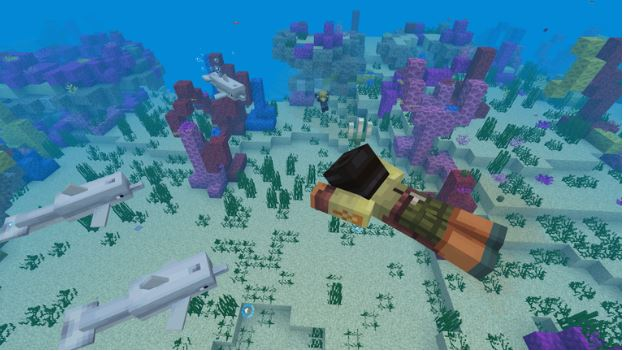Minecraft Aquatic Phase 2