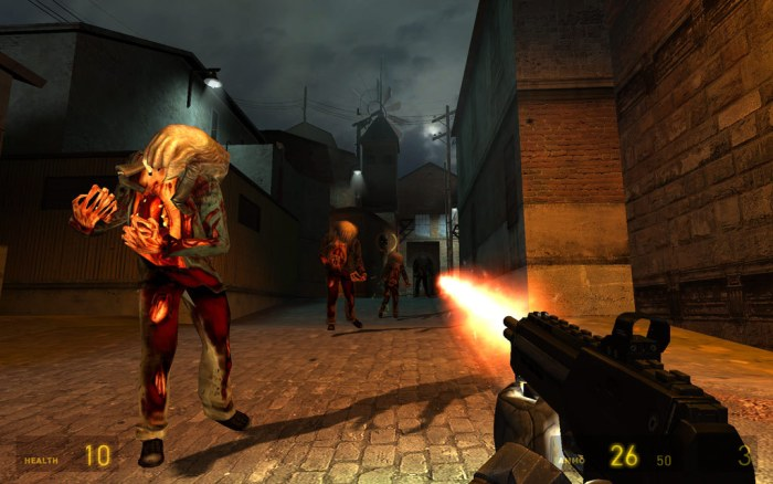 Half-Life 2 as played in gaming pc