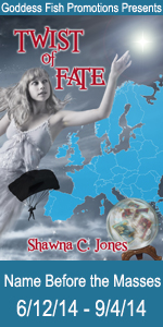NBtM Twist of Fate Book Cover Banner copy