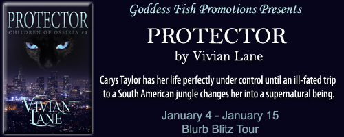 BBT_Protector_Banner copy