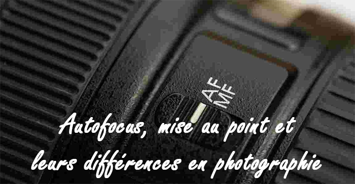 apprendre la photo lyon autofocus mise au point
