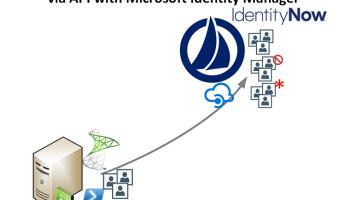 Creating SailPoint IdentityNow Access Profiles via API and