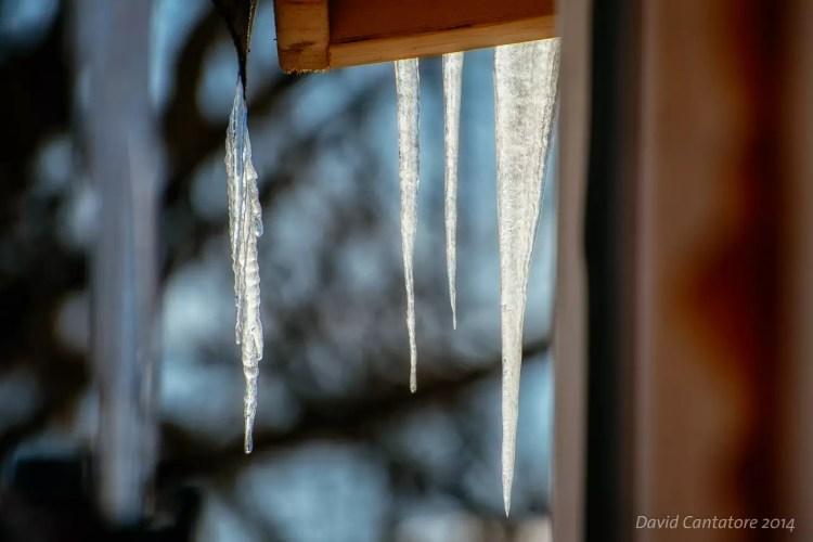 Still Winter