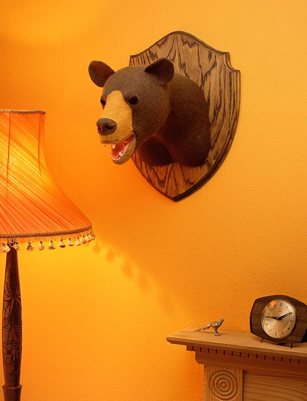 Woolly mammals Bear