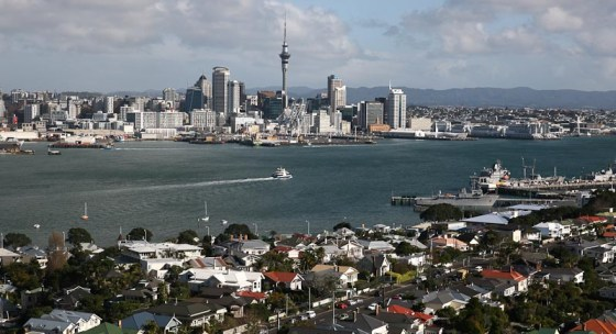 From Mt Victoria Davenport Auckland