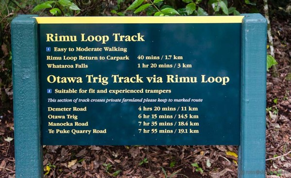 Track sign Otanewaiuku Forest