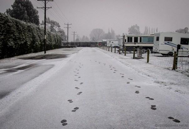 Winter near Mosgiel Dunedin