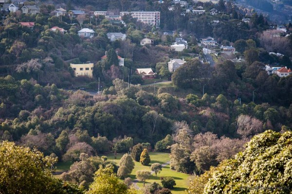 Lower Dalmore across Woodhaugh Gardens, Dunedin