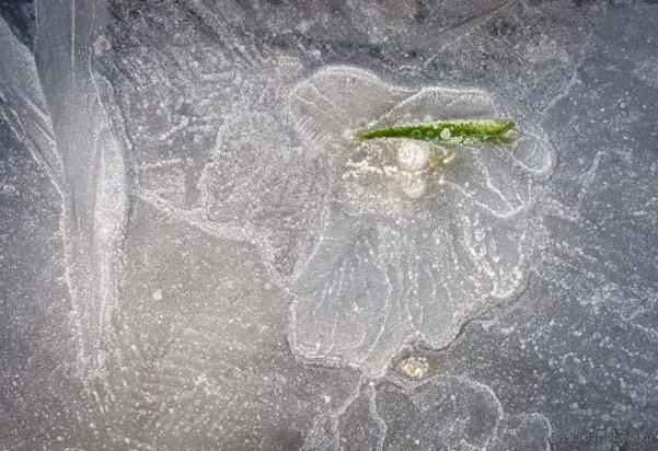 Ice Image 3