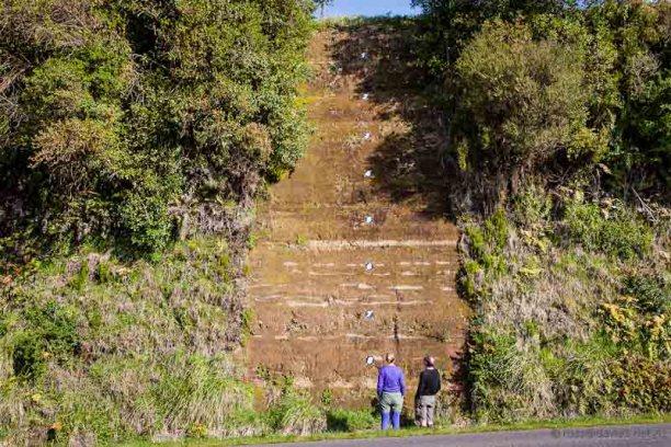 Cardiff road cutting South Taranaki