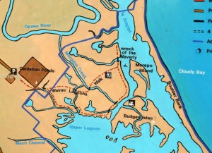 Map of Wairau Estuary walks