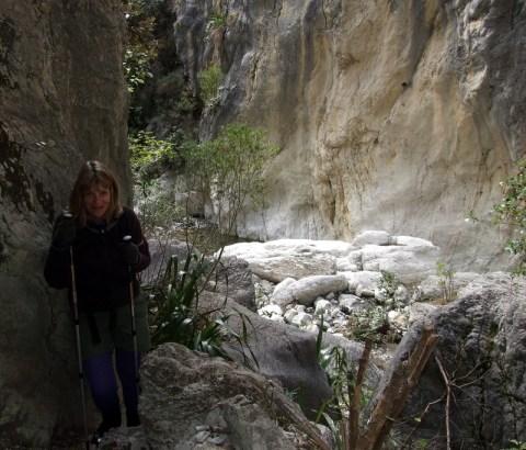 Isolation Creek