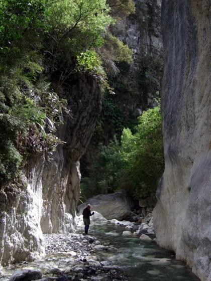 Above Sawcut Gorge