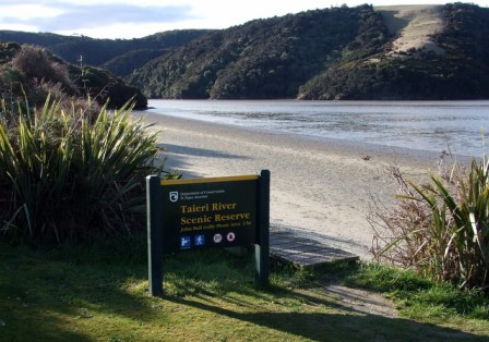Walking Track Taieri River