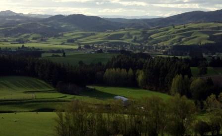 Taieri Plains
