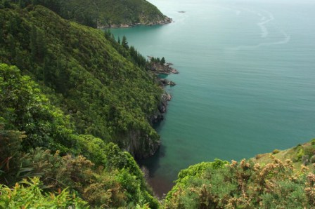 Coastline Whites Bay