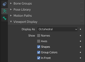 a screenshot showing which boxes to check in the viewport display