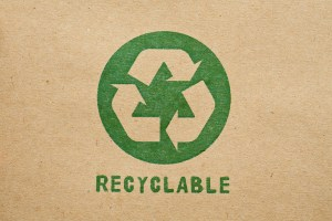 Read more about the article Sustainable Packaging Solutions for an Eco-Friendly Future
