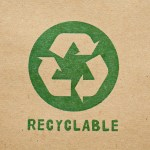 Sustainable Packaging Solutions for an Eco-Friendly Future