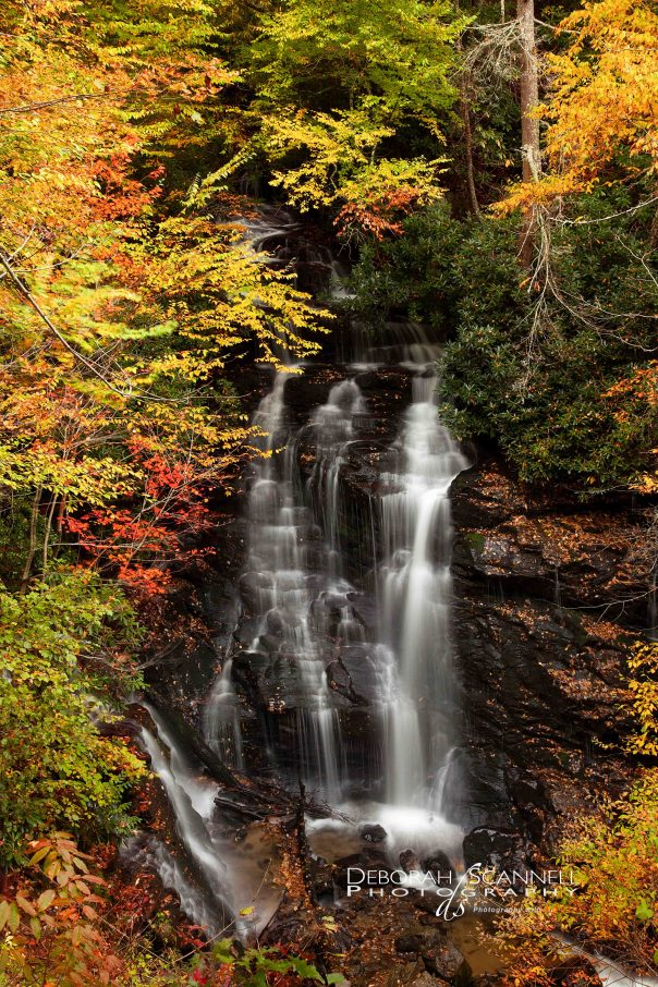 Soco Falls all dressed up for autumn 2013