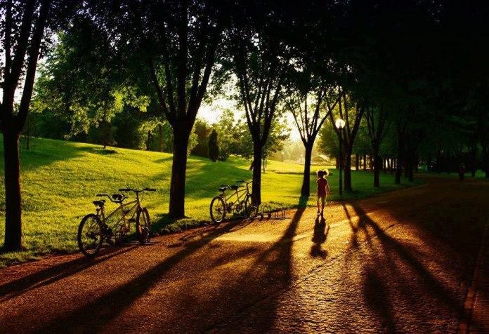 soganli-botanik-parki