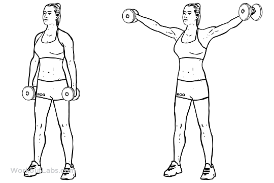 lateral-raise.png