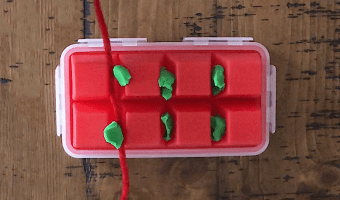 This project uses an ice tray, Play-Doh, and pipe cleaners to illustrate the importance of flossing! Teaching kids to floss just got a whole lot easier.