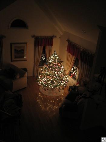2006_xmas_tree