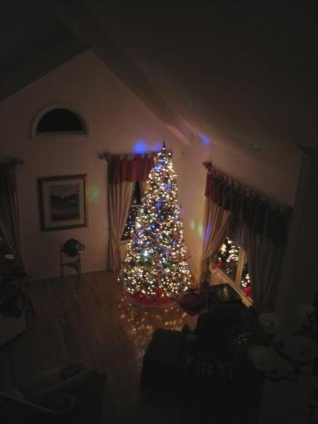 2007 Christmas tree small