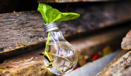 Sustentabilidade na Odontologia: você a pratica?