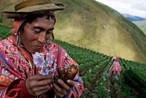 24 de junio Inti Raymi, San Juan y el Día del Campesino