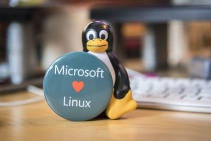 microsoft-linux-100617799-primary.idge