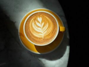cafeína e performance