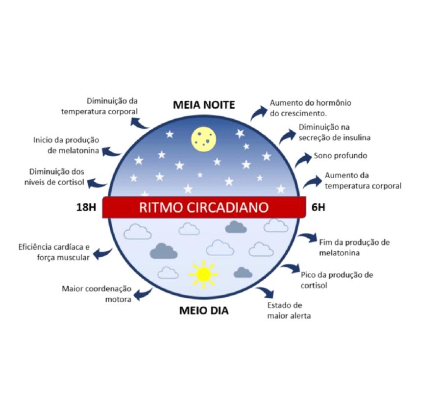 nutrição e ciclo circadiano
