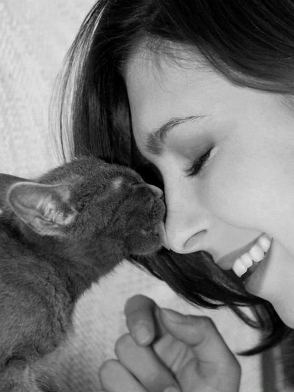 Ceea ce numesc eu o pisică cu sprâncene pensate şi zâmbet plăcut.
