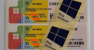 Perbedaan Lisensi Windows COA, OEM, OLP dan FPP Microsoft