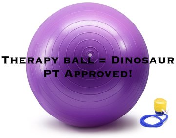 therapy ball