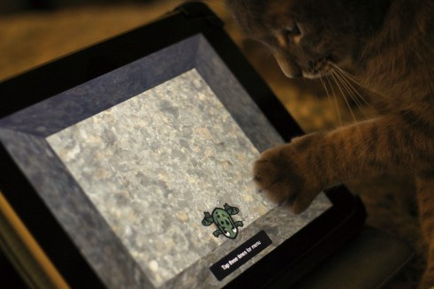 Kat spelt met iPad