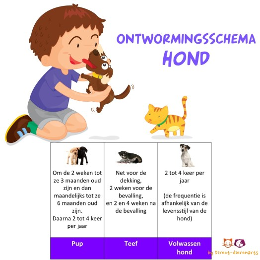Ontwormingsschema Hond