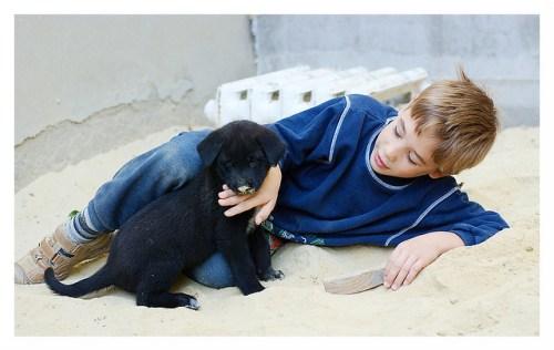 puppy spelt met kind