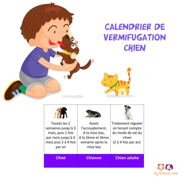 Calendrier vermifugation chien