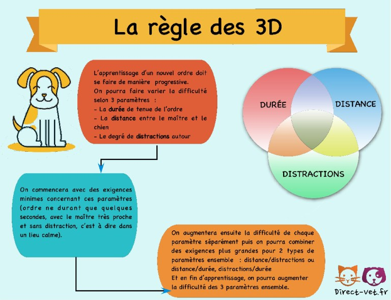 La règle des 3 D: Difficulté, Distance, Distraction Education-canine-3D-sm