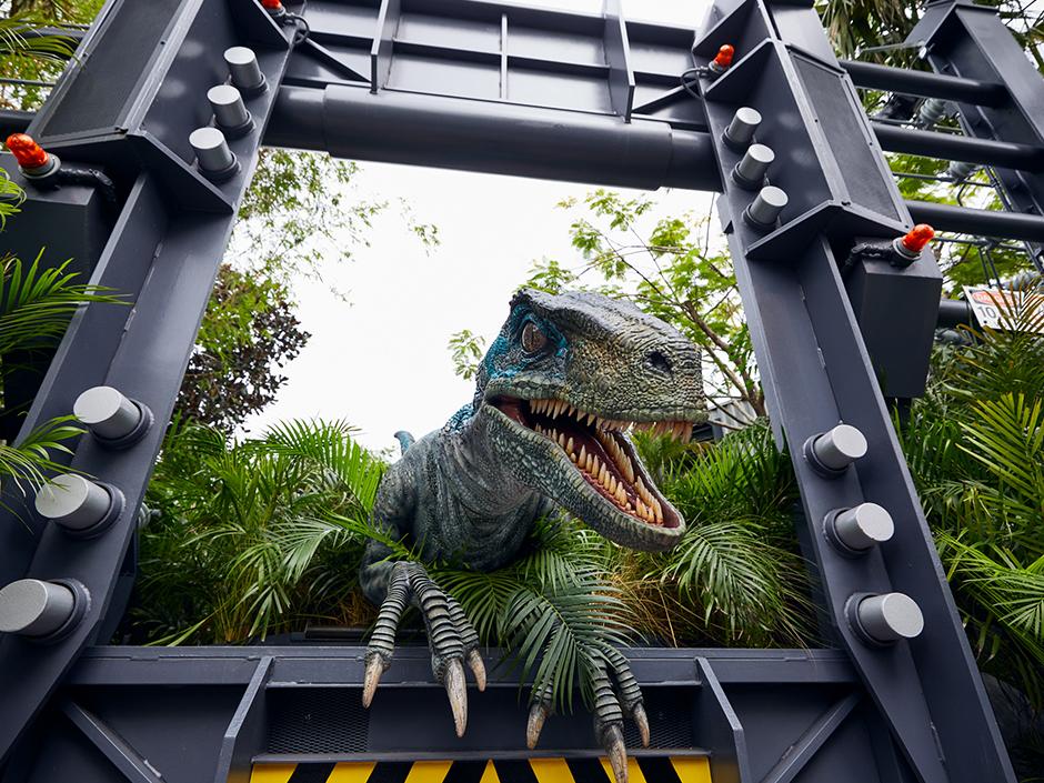 JP Raptor Encounter