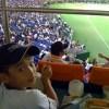 ドーム野球観戦