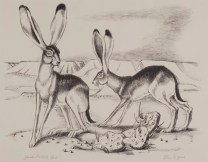 Otis Dozier, Jackrabbits, n.d., lithograph, Dallas Museum of Art, gift of Mrs. Arthur Kramer, Sr. 1956.135